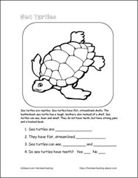 sea crossword sea turtle word search crossword puzzle and more crossword turtles and crossword