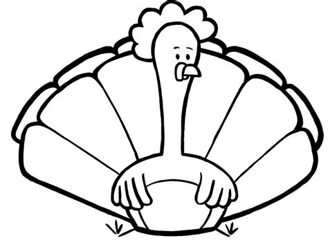 basic turkey coloring page cute turkey coloring pages clipart panda free clipart