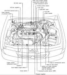2006 Nissan Sentra Engine Diagram How Do You Replace A Fuel Filter On A 1997 Nissan Sentra