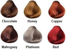 pravana hair color conversion chart pravana hair color chart shades brown hairs