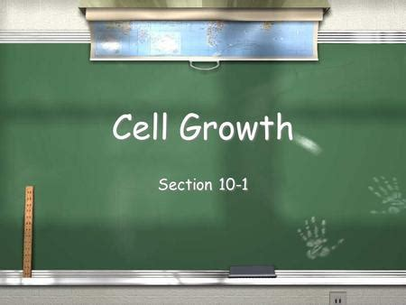 section 10 1 cell growth cell growth division and reproduction ppt video online