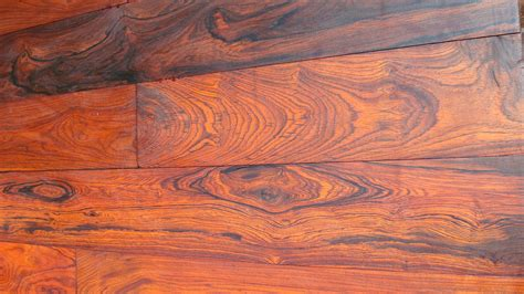what is a cocobolo cocobolo flooring floor matttroy