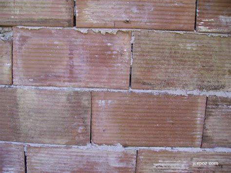 Briques Pour Cloisons by Les Cloisons En Briques Jexpoz