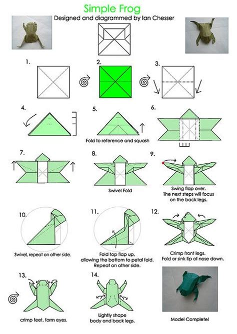 25 Best Ideas About Origami Frog On Easy - 25 best ideas about origami frog on easy