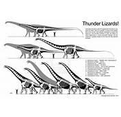 Dinosaur Size Comparison Thread
