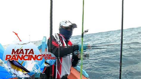 Mata Pancing Laut pertarungan singkat dengan tenggiri laut dangkal mata