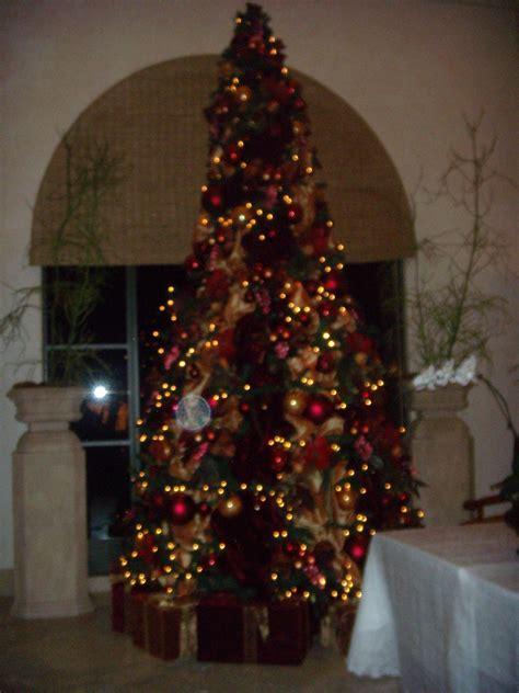 christmas trees irvine photo album best christmas tree