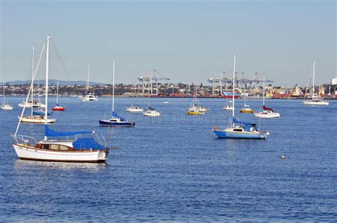 boat mooring auckland boats mooring in waitemata harbour new zealand editorial