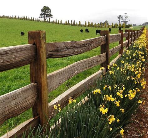 country fence styles farm in for school
