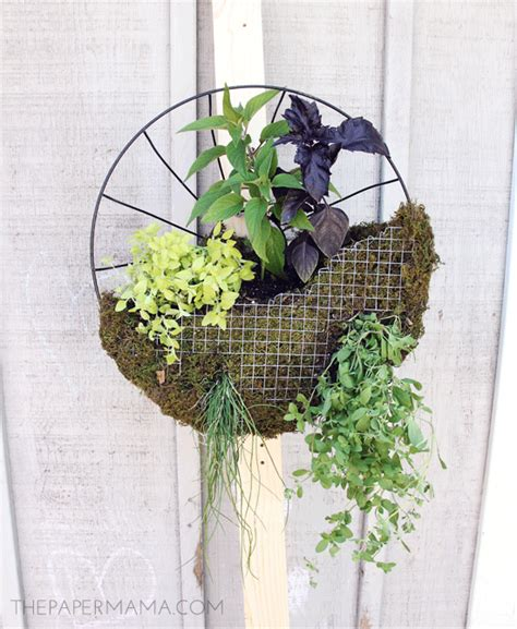 hanging herb planters mini herb garden rethinking the hanging planter