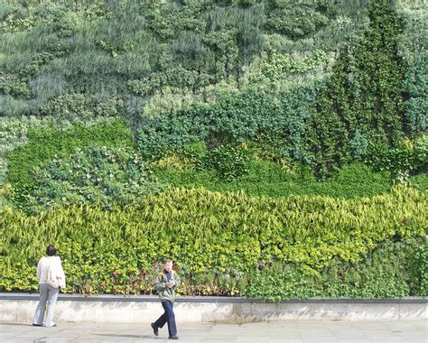 living roofs and walls sign up for the living walls and ecosystem services