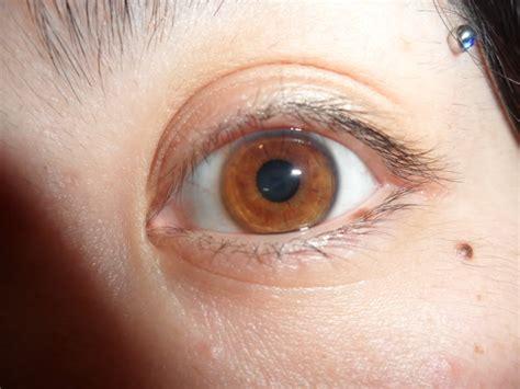 honey eye color how to use manuka honey in postings on using honey