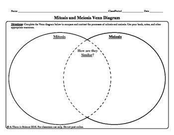 mitosis vs meiosis venn diagram mitosis and meiosis venn diagram worksheet 28 images