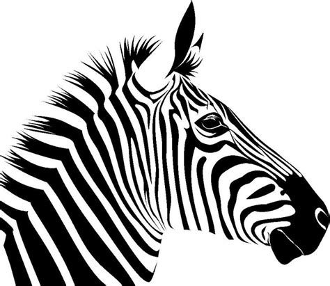 zebra pattern clipart free zebra cliparts the cliparts