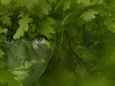 wallpaper of green eyes green eyes wallpaper and background 1280x960 id 274778