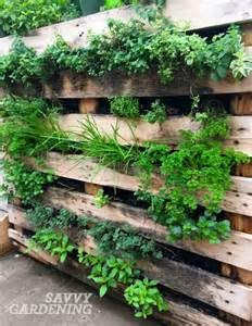 Vertical Fruit Garden Vertical Vegetable Garden Ideas