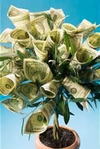 Money tree gift idea cash gift christmas money tree ideas diy money