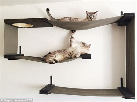 chair cat hammock uk cat mad construct furniture for pets and sell them