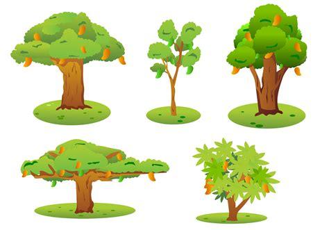 mango tree vector   vectors clipart