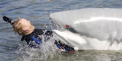 2015 beach shark attack image gallery shraks attack