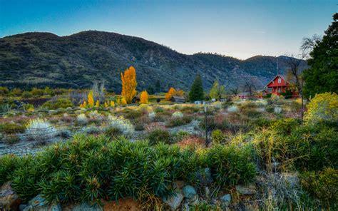 california fall colors california fall color 187 southern california
