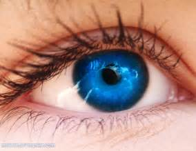 blue eyed blue blue eye blue blue eye and beautiful
