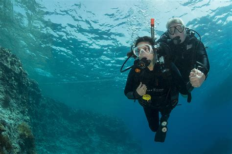 dive in sharm dive in sharm 28 images sharm el sheikh dives