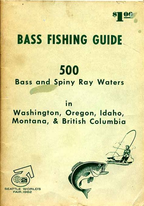 bass fishing a beginners guide to bass fishing books bass fishing guide