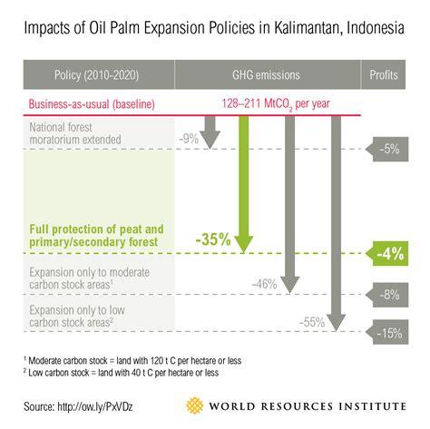 Perkiraan Minyak Kelapa mencapai semuanya indonesia dapat memproduksi minyak