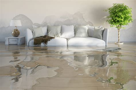 what are the effects of water damage in the home inreads