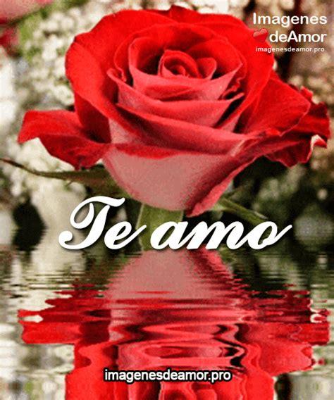imagenes de te extraño con rosas 11 im 225 genes de rosas gif para expresar tus sentimientos