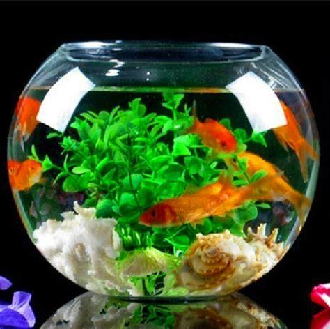 Glass Goldfish Bowl Vases by Popular Goldfish Bowl Vase Buy Cheap Goldfish Bowl Vase