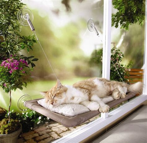 sunny seat window mounted cat bed new free shipping ebay