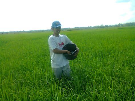 pupuk hayati sebagai pembenah tanah organik tlogo tani