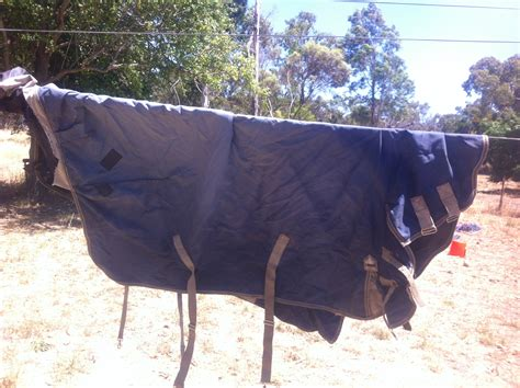 rugs for horses for sale 5x 5 9 rugs saddles and tack for sale wa perth