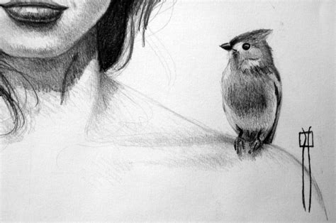 dibujos a lapiz imagenes gratis dibujos a lapiz free large images