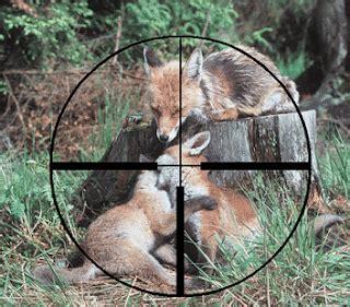 imagenes satanicas fuertes zoologia causas de la extincion de los animales