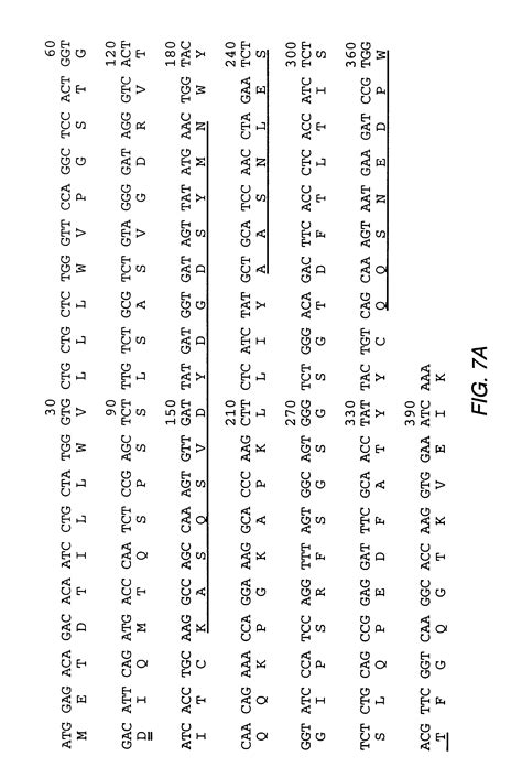 design by humans uk equivalent patent us6210671 humanized antibodies reactive with l