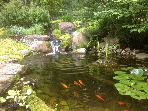 how to create a pond and stream for an outdoor waterfall 10 pond and waterfall cleaning mistakes baltimore