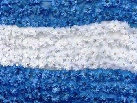 ideas para hacer banderas q represente a la familia quiero ver florecer a mi bandera argentina youtube