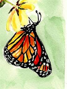 butterfly pictures to paint best 25 butterfly watercolor ideas on