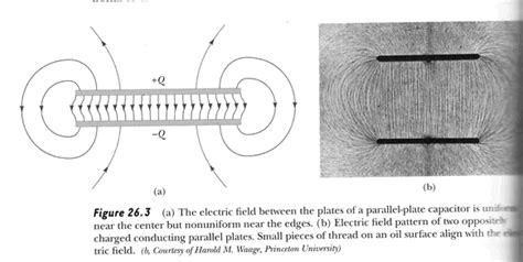 electric field lines of capacitor electric forces and electric fields