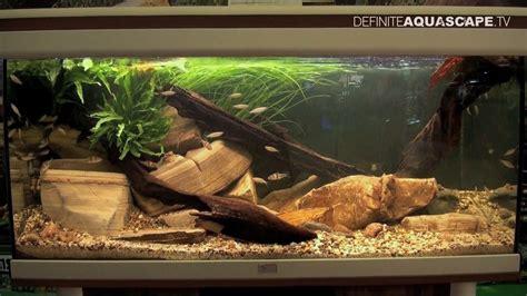 aquarium design competition biotope aquarium design contest 2014 the 4th place
