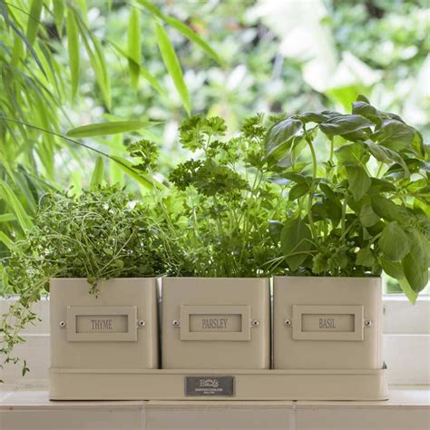 unwins kitchen garden herb kit on sale fast delivery burgon ball herb pots in a tray on sale fast delivery