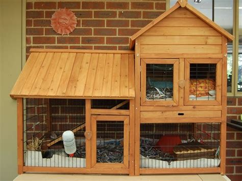 Pig Sheds For Sale by Best 25 Guinie Pig Ideas On Cages For Guinea