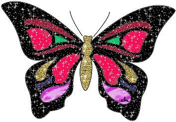 imagenes de mariposas q brillan mariposas dimensi 243 n cris 225 lida