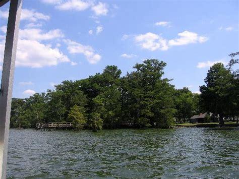 reelfoot lake boat rental reelfoot lake pontoon boat cruise tiptonville all you
