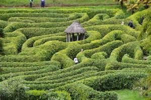 garden maze viewing gallery