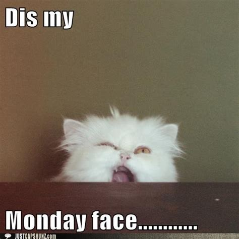 Monday Meme - i hate mondays on tumblr