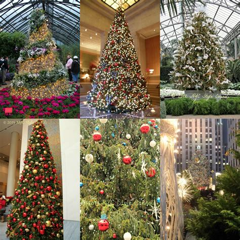 10 best christmas trees in new york city nyc style a